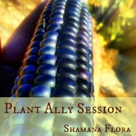 plantallysession