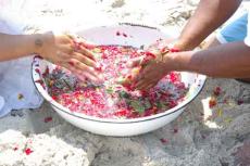 Introduction to Shamanic Herbalism ~ Lesson 5 ~ bowlOfPlants