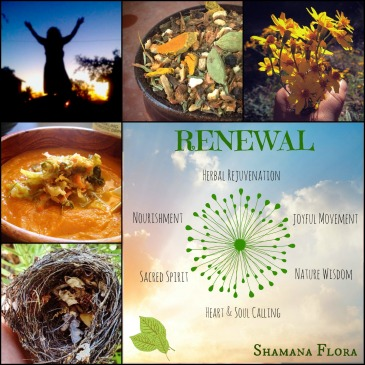 renewal with images
