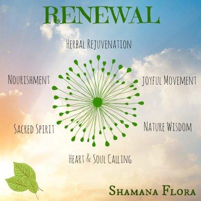 renewal2