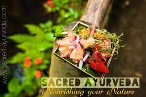 sacred ayurveda